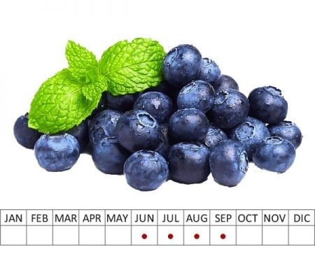 Fruits Blueberries