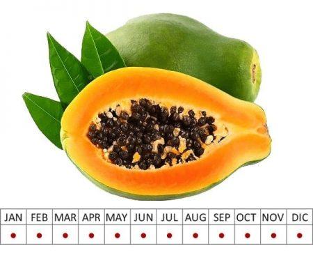 Fruits Papaya