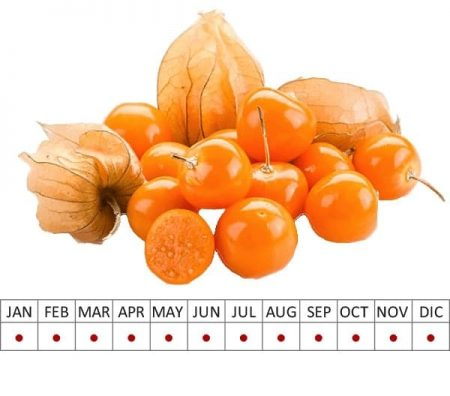 Fruits Physalis